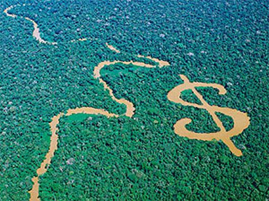 Economy is ecology