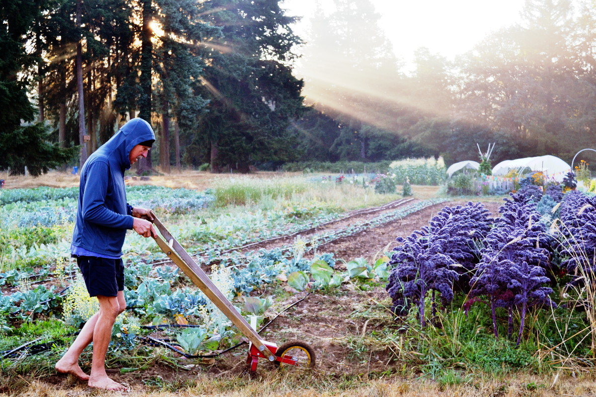 Harold doing barefoot gardening