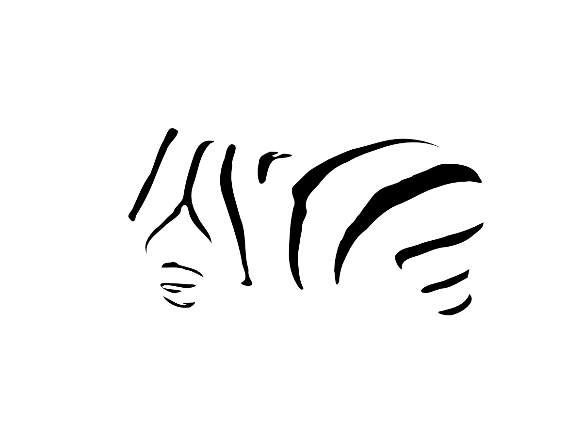 Negative space zebra