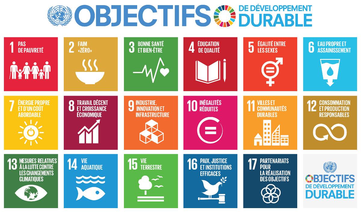 SDG Objectifs de Développement Durable 1200px