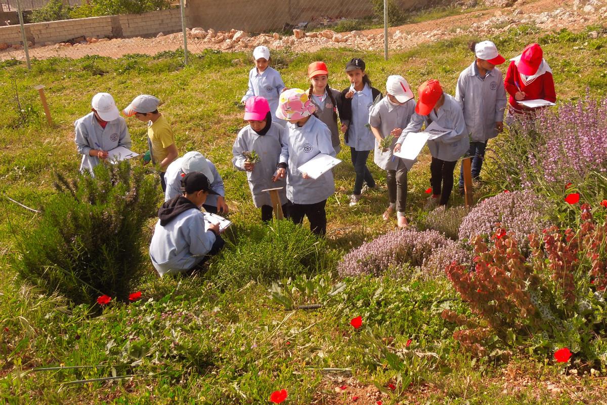 Crianças tendo uma aula de natureza na primeira pessoa, fornecida por A Rocha Líbano