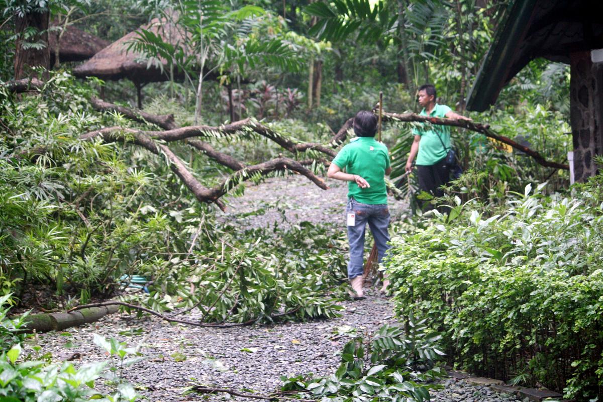 Rétablissement après le typhon Mangkhut à La Mesa Eco Park, Quezon City, métro de Manille, Philippines