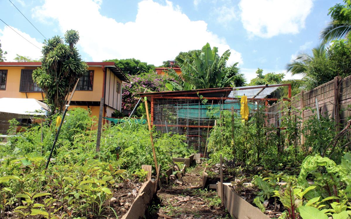 Casa Adobe's vegetable garden